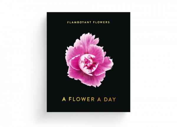 seltmann publishers abrisskalender flamboyant flowers (jahresunabhängig)
